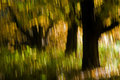 Autumn colors rembrandt park amsterdam blurred trees Royalty Free Stock Photo