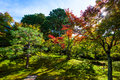 Autumn colors at tofukuji temple, Kyoto Royalty Free Stock Photo