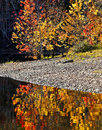 Autumn colors water reflection and on the washademoak at codys cambridge narrows coles island queens county new brunswick canada Royalty Free Stock Photography