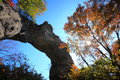 Autumn colours of crag mt myogi stone arch gunma japan Stock Image