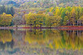 Autumn colurs reflected in a lake trees ablaze with colour the calm surface of coniston water the district Royalty Free Stock Images