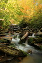 Autumn comes to the great smoky mountain national park is located in western north carolina and eastern tennessee begins as water Stock Images