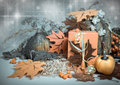 Autumn composition still life on neutral background tinted image Royalty Free Stock Image