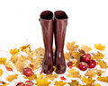 Autumn concept. Rubber boots color Marsala. Autumn leaves and ap