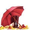 Autumn concept. Rubber boots and umbrella color Marsala.