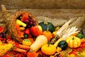 Autumn cornucopia harvest or thanksgiving filled with vegetables against wood Royalty Free Stock Images