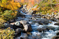 Autumn creek Royalty Free Stock Photo
