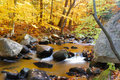 Autumn Creek with trees and rocks Stock Image