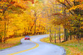 Autumn curve with car Stock Image