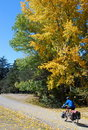 Autumn Cycling in New Zealand Royalty Free Stock Photo