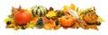 Autumn decoration banner Royalty Free Stock Photo