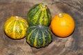 Autumn decoration pumpkin gourd on a wooden board Stock Photography