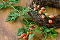 Autumn decoration of rose hips. floristry. Royalty Free Stock Photo