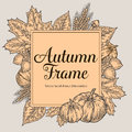 Autumn design for greeting card. Vintage harvest festival autumn elements. Hand drawn vector doodle frame with leaves, acorn, clov
