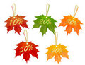 Autumn designed sale cards. Vector. Stock Photo