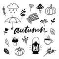 Autumn doodles. Hand drawn set of sketches.