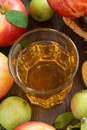 Autumn drink apple cider or juice in a glass top view vertical Royalty Free Stock Photography