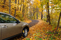 Autumn driving Royalty Free Stock Photo