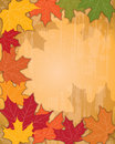 Autumn Fall Background Royalty Free Stock Photography