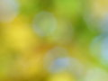 Autumn fall background abstract blur stock photos blurred foliage orange yellow and green leaves Stock Photos
