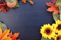 Autumn Fall Background with Decorated Borders. Royalty Free Stock Photo