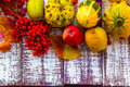 Autumn fall background table setting background vegetables fruit on the wooden with fruits and Royalty Free Stock Photo