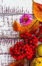 Autumn fall background table setting background vegetables fruit on the wooden with fruits and Royalty Free Stock Photography
