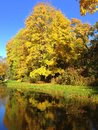 stock image of  Autumn, fall landscape. Tree with colorful leaves near little pond