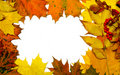 Autumn fall leaf frame Royalty Free Stock Photo
