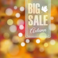 Autumn Fall Sale Poster With B...
