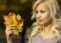 Autumn fashion girl mujer joven hermosa rubia con las hojas de arce amarillas a disposición afuera Imagen de archivo libre de regalías