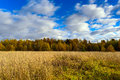 Autumn Field With Blue Sky For...
