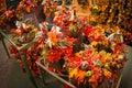 Autumn Floral Arrangements Royalty Free Stock Photo