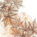 Autumn floral background with maple leafs vector hand drawn Royalty Free Stock Images
