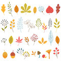 Autumn floral design elements set of hand drawn Royalty Free Stock Photos