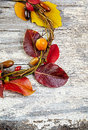 Autumn floral wreath on rustic wooden background Royalty Free Stock Photo