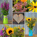 Autumn flowers collage with colorful Royalty Free Stock Photo
