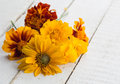Autumn flowers on table fresh white wooden background postcard selective focus Stock Image