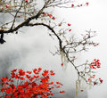 Autumn foggy day in  mountains Royalty Free Stock Photo
