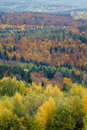 Autumn foliage Royalty Free Stock Photos