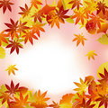 Autumn foliage background Royalty Free Stock Photos