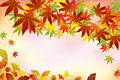Autumn foliage background Royalty Free Stock Image