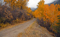 Autumn foliage colorado dirt road in the sawatch range rockies Stock Photo