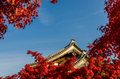 Autumn foliage in eikando temple kyoto japan with roof Stock Photo