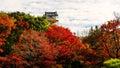 autumn foliage with Himeji castle