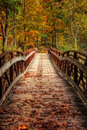 Autumn Foot Bridge Royalty Free Stock Photo