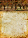 Autumn Forest and Bench on a Grunge Background Royalty Free Stock Photo