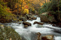 Autumn Forest Cascade Royalty Free Stock Photo