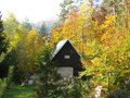 Autumn forest with chalet and field Royalty Free Stock Image