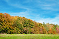Autumn forest meadow and blue sky green Stock Photography
